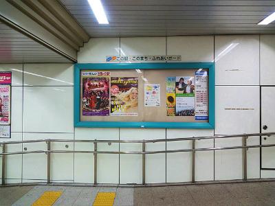 140630_umeda_25.jpg